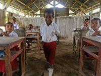 mdgs - membangun pendidikan di indonesia