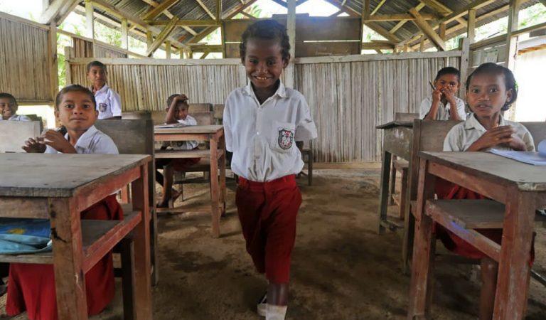 Membangun Pendidikan di Indonesia dan Mencapai MDGs